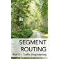 Segment Routing Part II: Traffic Engineering (English Edition)