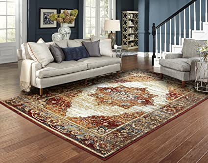 Amazon.com: Luxury Distressed Rugs for Living Room 8x10 Red Rug ...