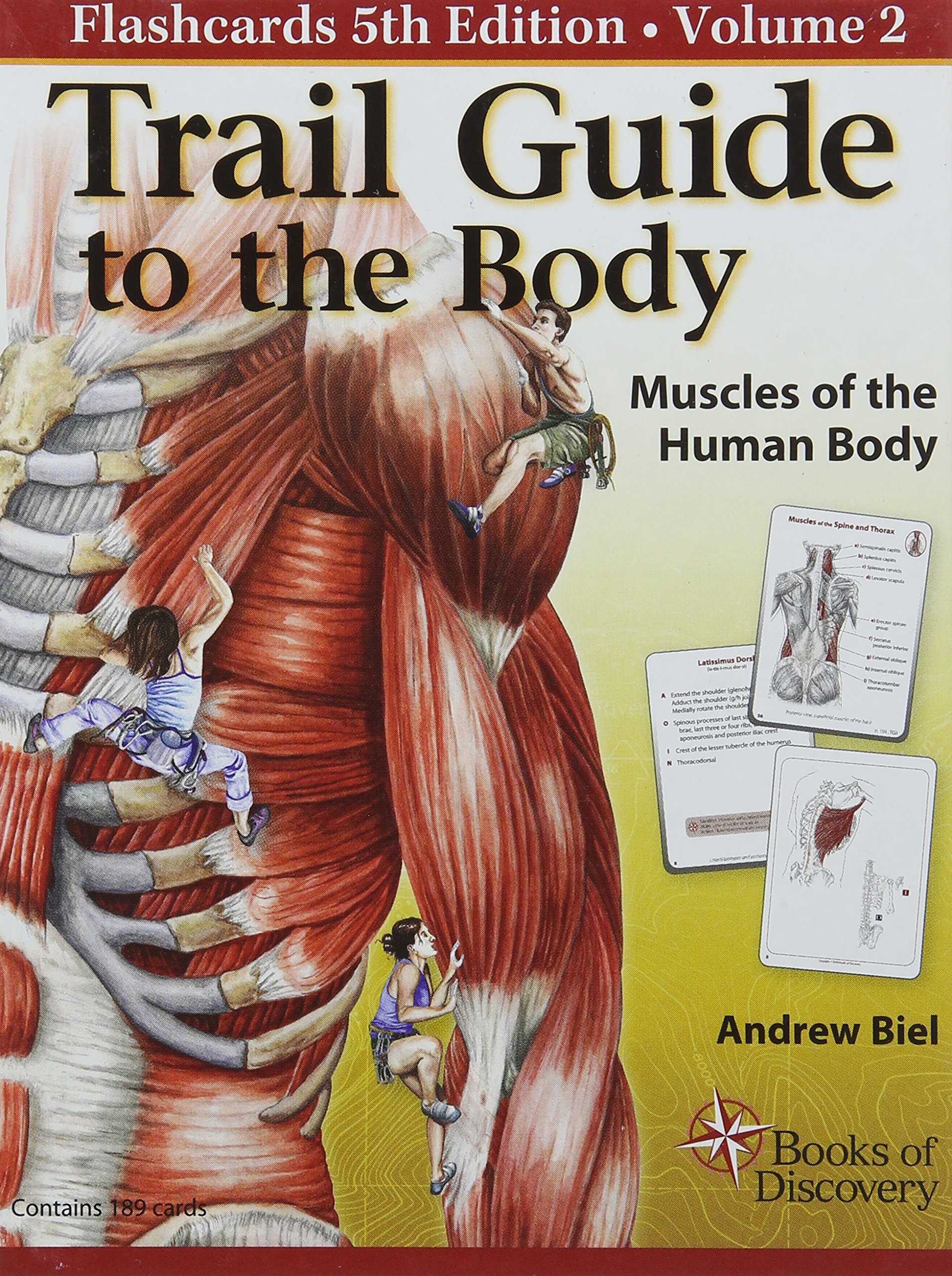 Trail Guide to the Body Flashcards Volume 2: Muscles of the Body ...