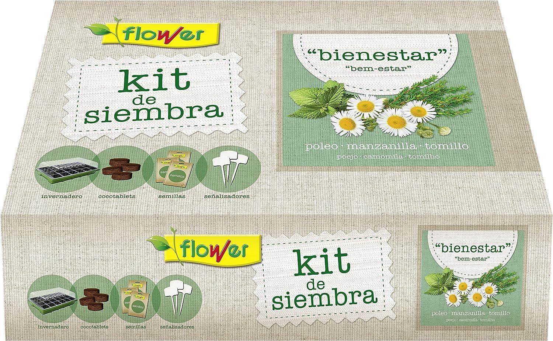 Flower 51175 51175-Kit semillas bienestar (poleo, manzanilla, tomillo), No aplica, 38x24.5x9.5 cm
