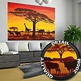 Fototapete Sonnenuntergang Afrika Wandbild Dekoration Elefant Giraffe Büffel Savanne Steppe Prärie Landschaft Africa Sunset   Foto-Tapete Wandtapete Fotoposter Wanddeko by GREAT ART (210 x 140 cm)