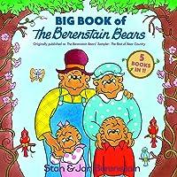 Big Book Of The Berenstain Bears
