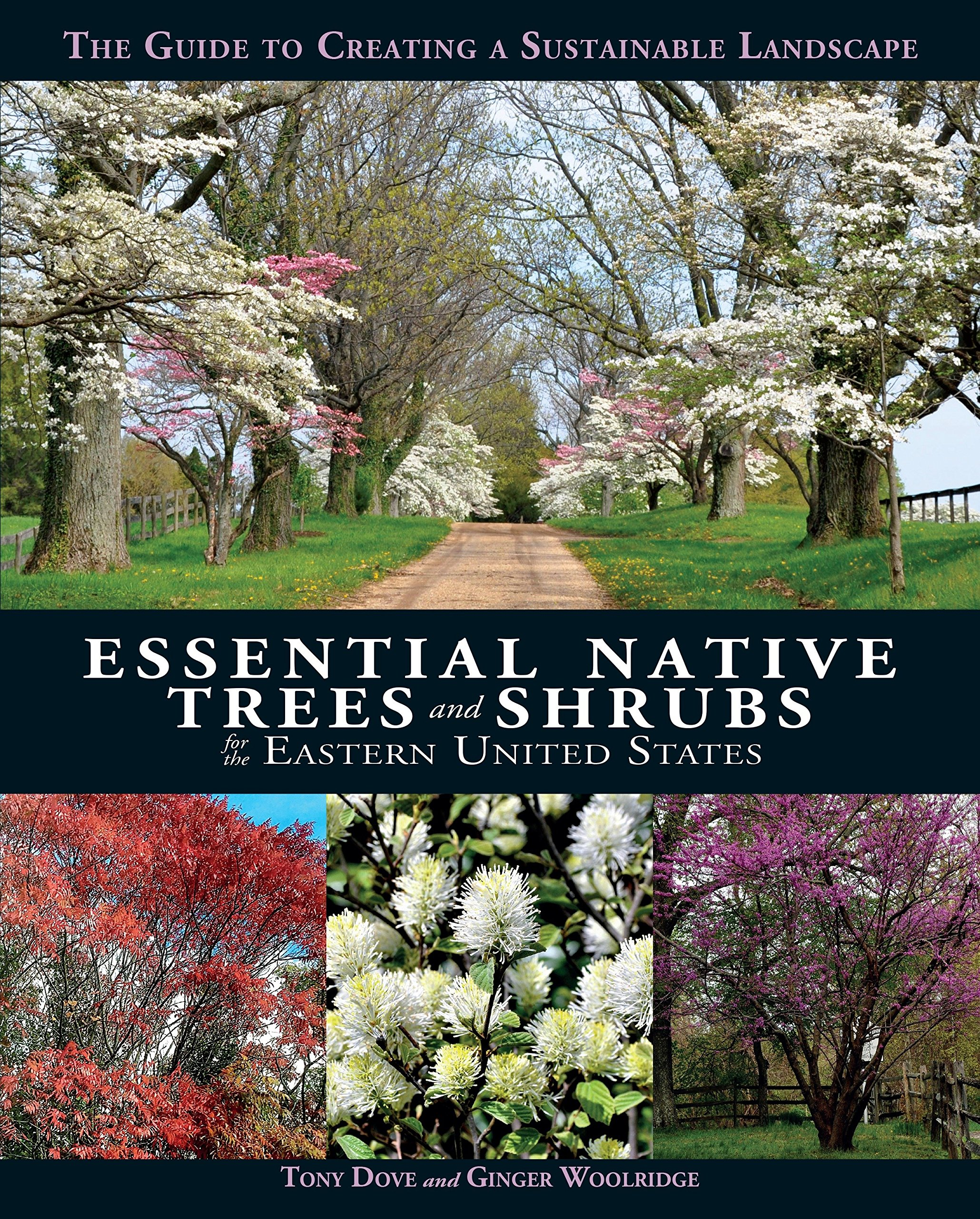 Essential Native Trees and Shrubs for the Eastern United States: The Guide to Creating a Sustainable Landscape