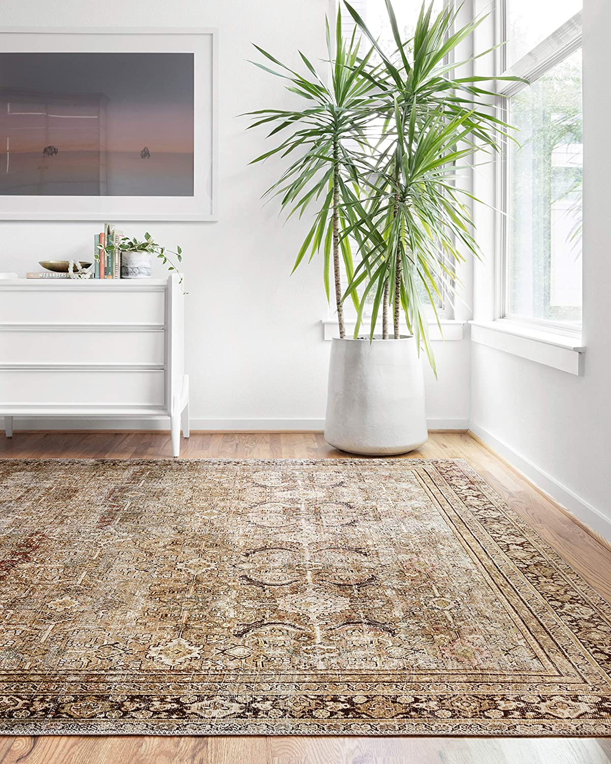 """Amazon.com: Loloi II Layla Collection Area Rug, 7'-6"""" x 9'-6"""", OLIVE/ CHARCOAL: Kitchen & Dining"""