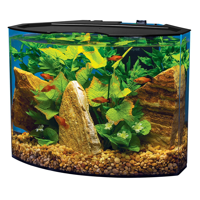 fish tank for office. Amazon.com : Tetra Crescent Acrylic Aquarium Kit, Energy Efficient LEDs, 5-Gallon Starter Kits Pet Supplies Fish Tank For Office T