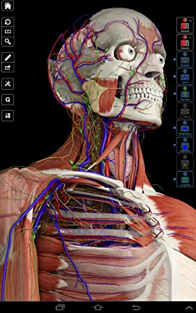 Amazon.com: Essential Anatomy 3: Appstore for Android