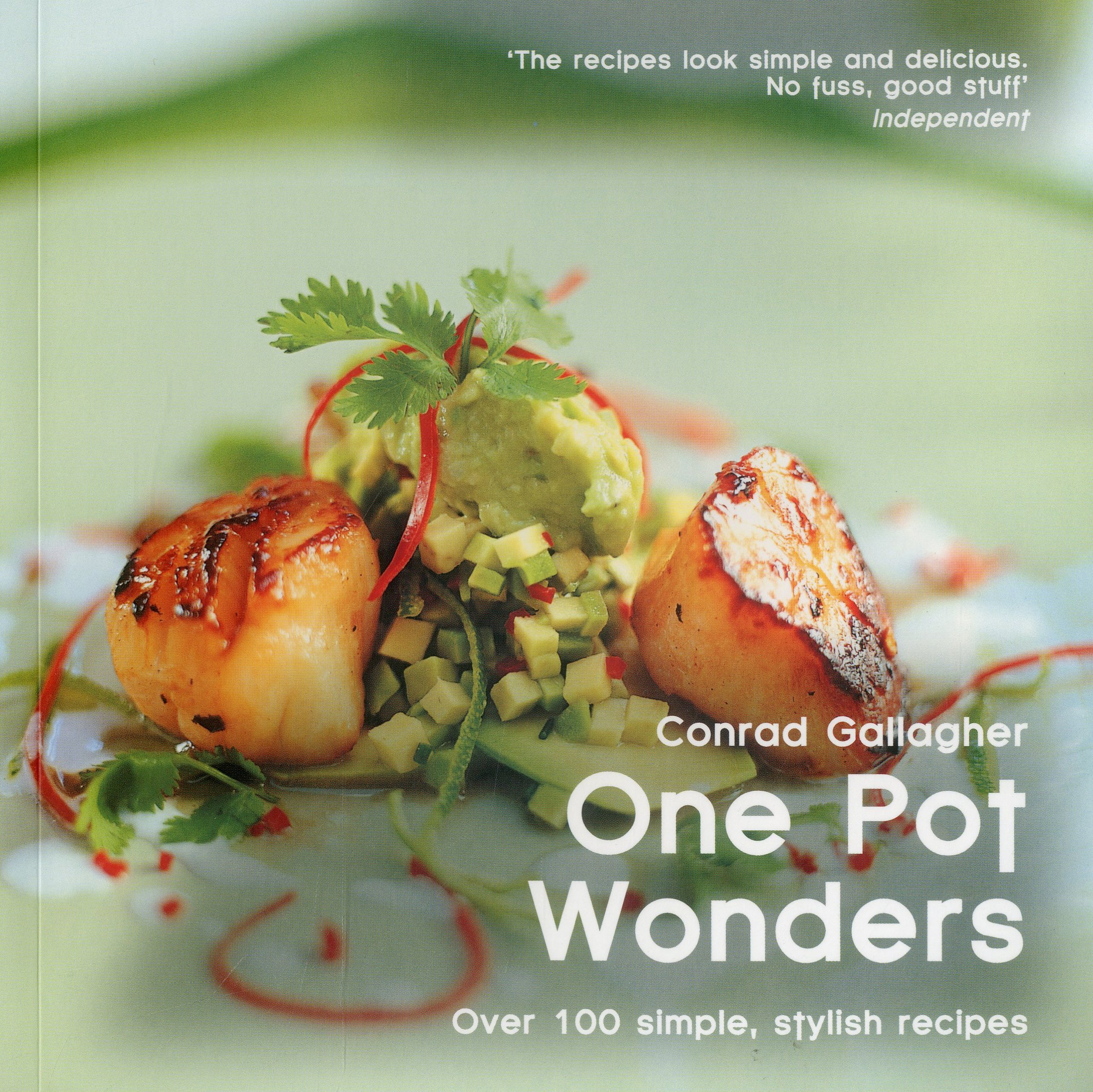Read Online One Pot Wonders: Over 100 Simple, Stylish Recipes (Easy Eat Series) PDF
