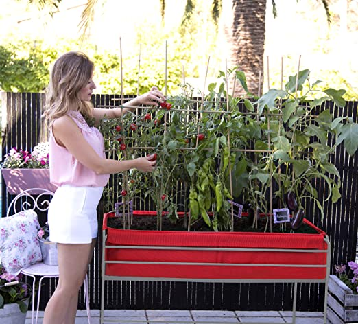 Huerto urbano Veggie Bag 126x54x80 cm.Color rojo: Amazon.es: Jardín