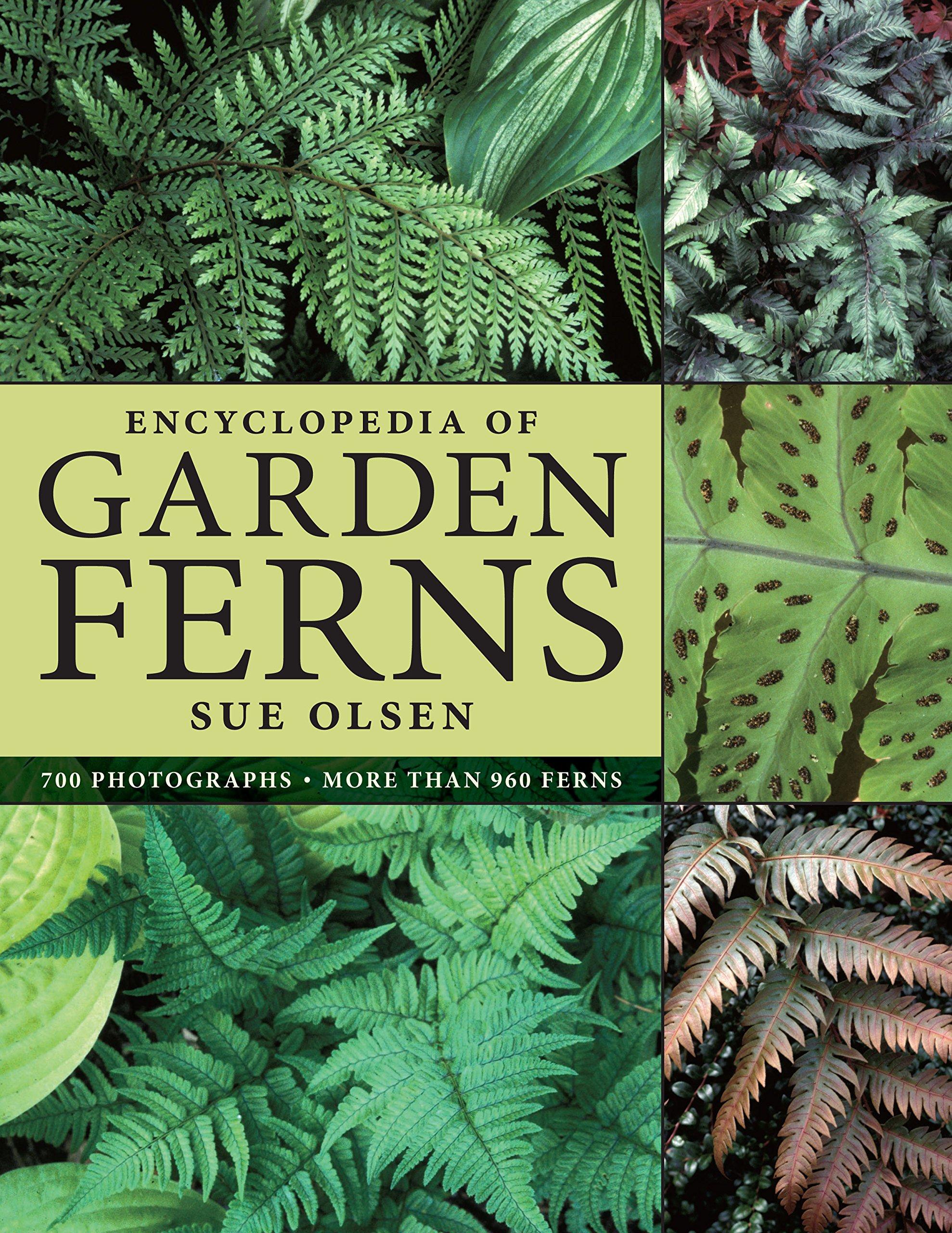 Bon Encyclopedia Of Garden Ferns: Sue Olsen: 9780881928198: Amazon.com: Books