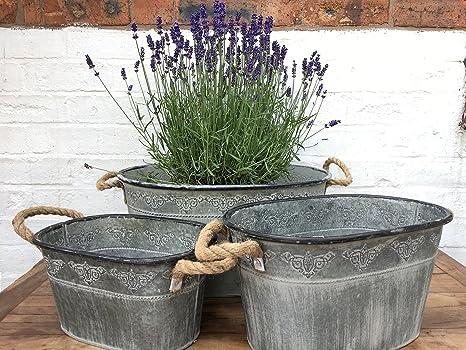 Vasca Da Bagno Di Zinco : Set di contenitori in stile vintage da giardino in metallo