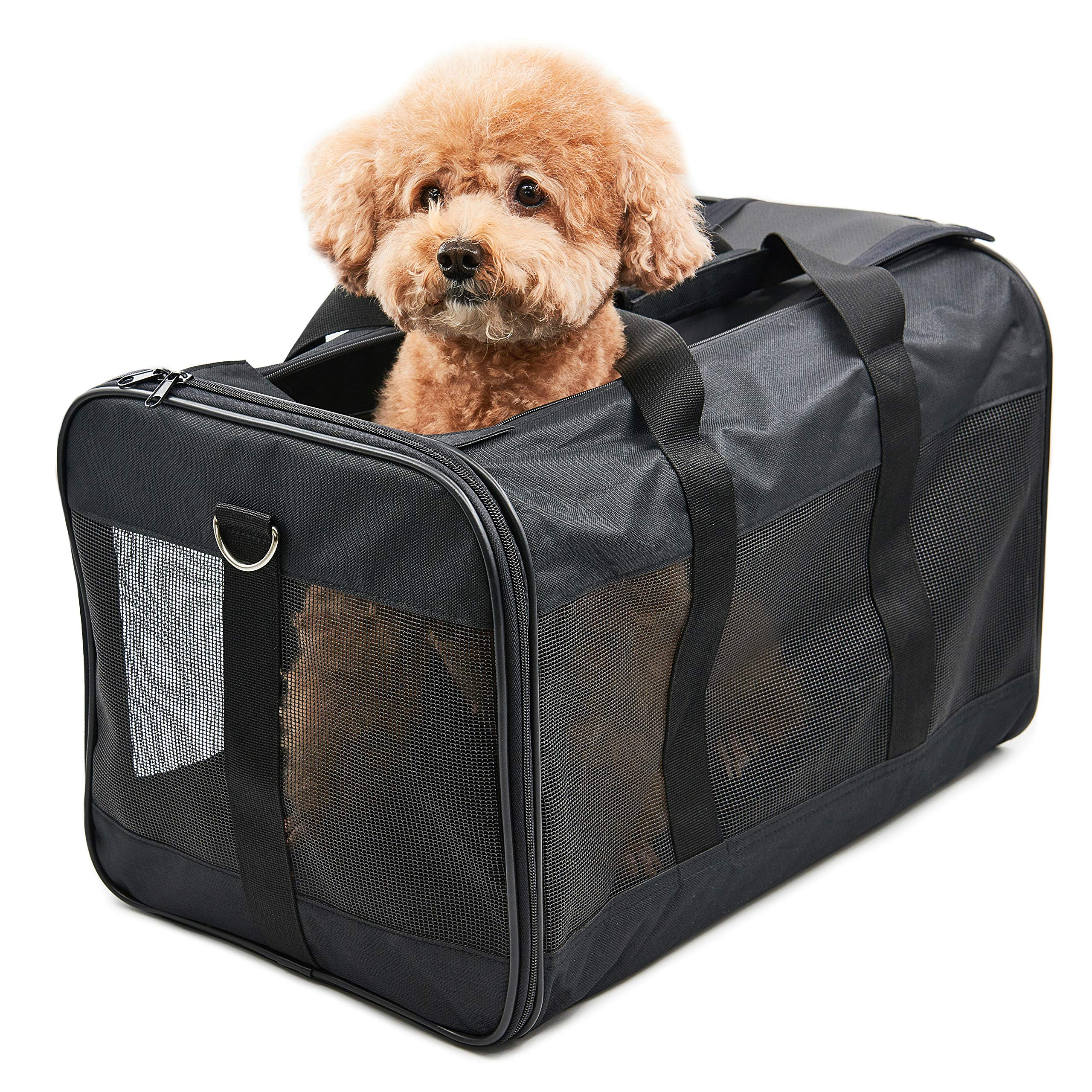 HITCH Pet Travel Carrier Soft Sided Portable Bag for Cats, Small Dogs, Kittens or Puppies, Collapsible, Durable, Airline Approved, Travel Friendly, Carry Your Pet with You Safely and Comfortably (L)