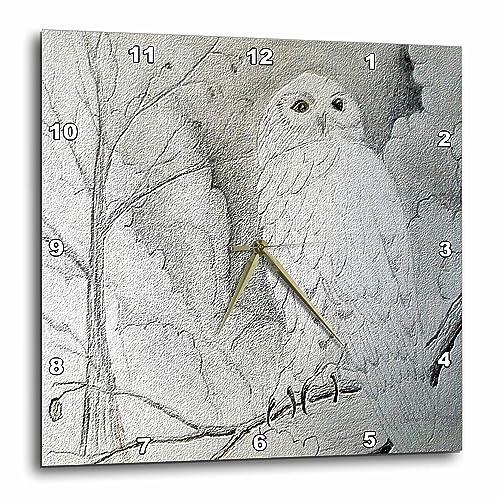 3dRose DPP_13726_3 Night Owl Wall Clock, 15 by 15-Inch