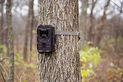 GPS tag -  Bushnell Trophy Cam HD Aggressor