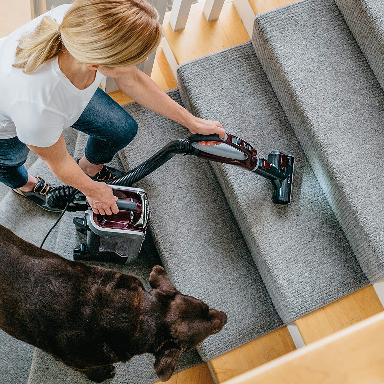 shark vacuum for pets