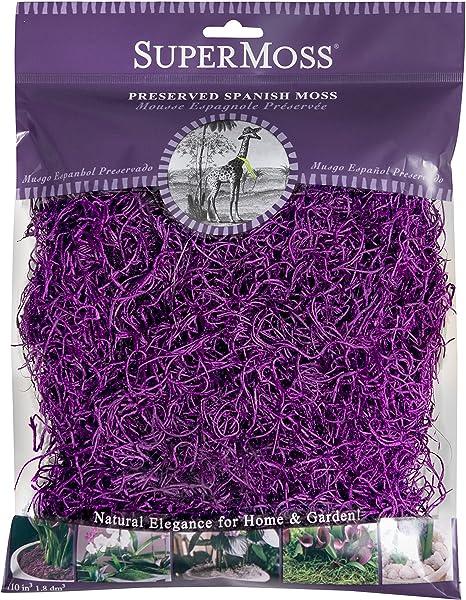 4oz Spanish Moss Preserved SuperMoss Purple 26962