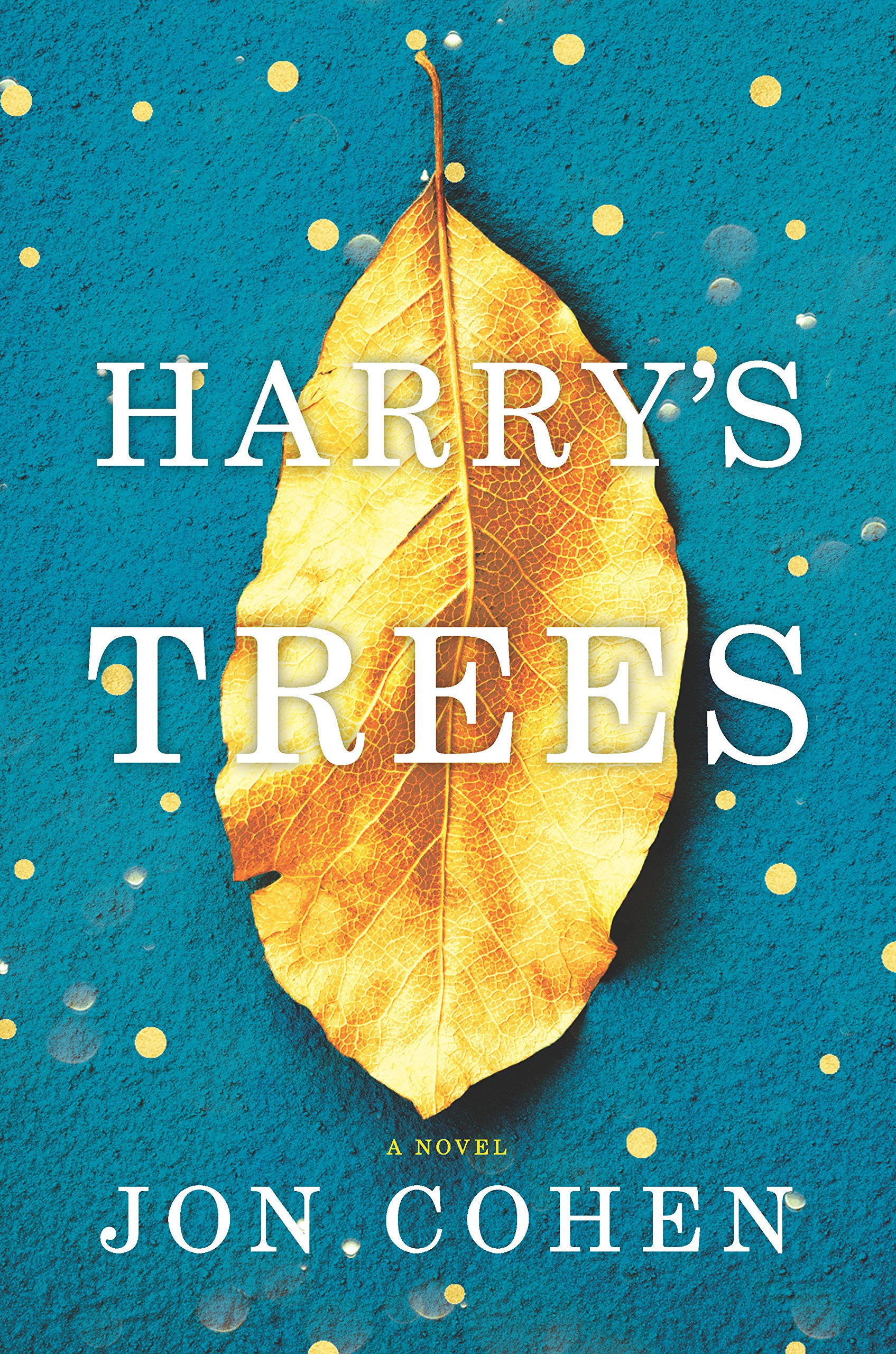 Image result for harrys trees