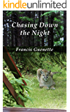 Chasing Down the Night (Crater Lake Series Book 3)