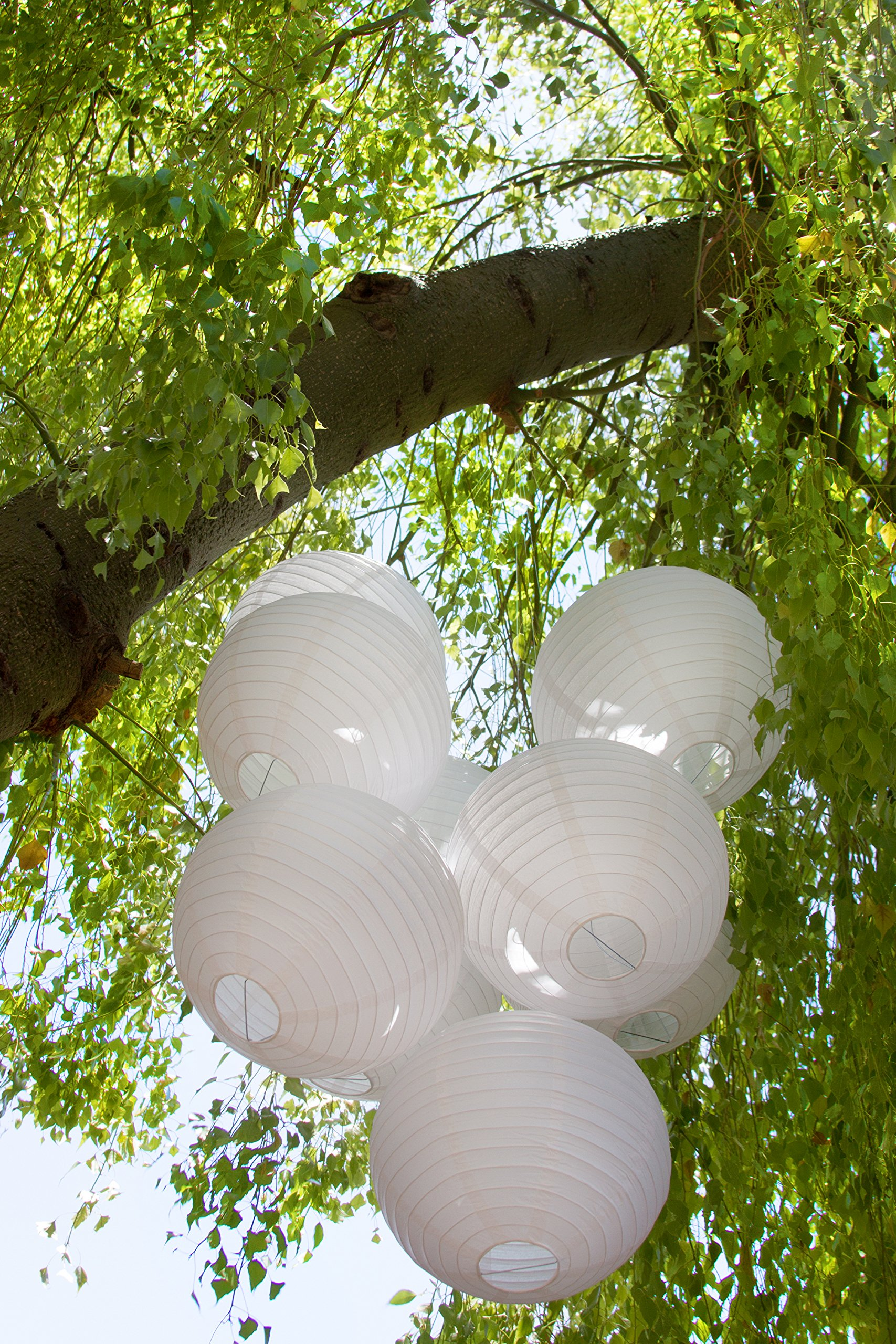 Just Artifacts 12inch Decorative Round Chinese Paper Lanterns 10pcs w/ 12pc LED Lights and Clear String (Color: White)