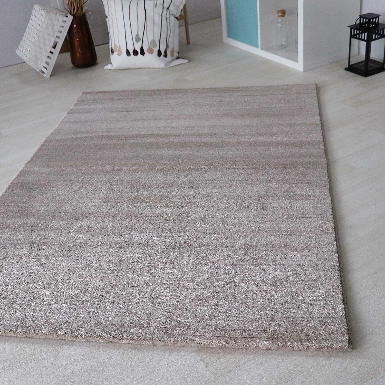 Teppich beige Kurzflor in versch. Größen für Wohnzimmer Jugendzimmer etc, Moderner Teppich schadstofffrei zertifiziert Neu (200 x 290 cm)