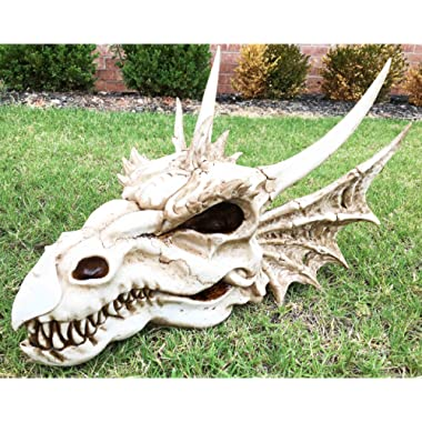 Large 18  Long Erathia Elder Dragon Skull Fossil Statue Figurine Might and Magic For Medieval Dragon Era Fans Game of Thrones Lovers
