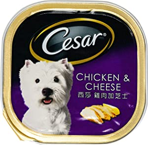 Cesar Dog Food with Chicken & Cheese Flavor 100 g (3.52 Oz)