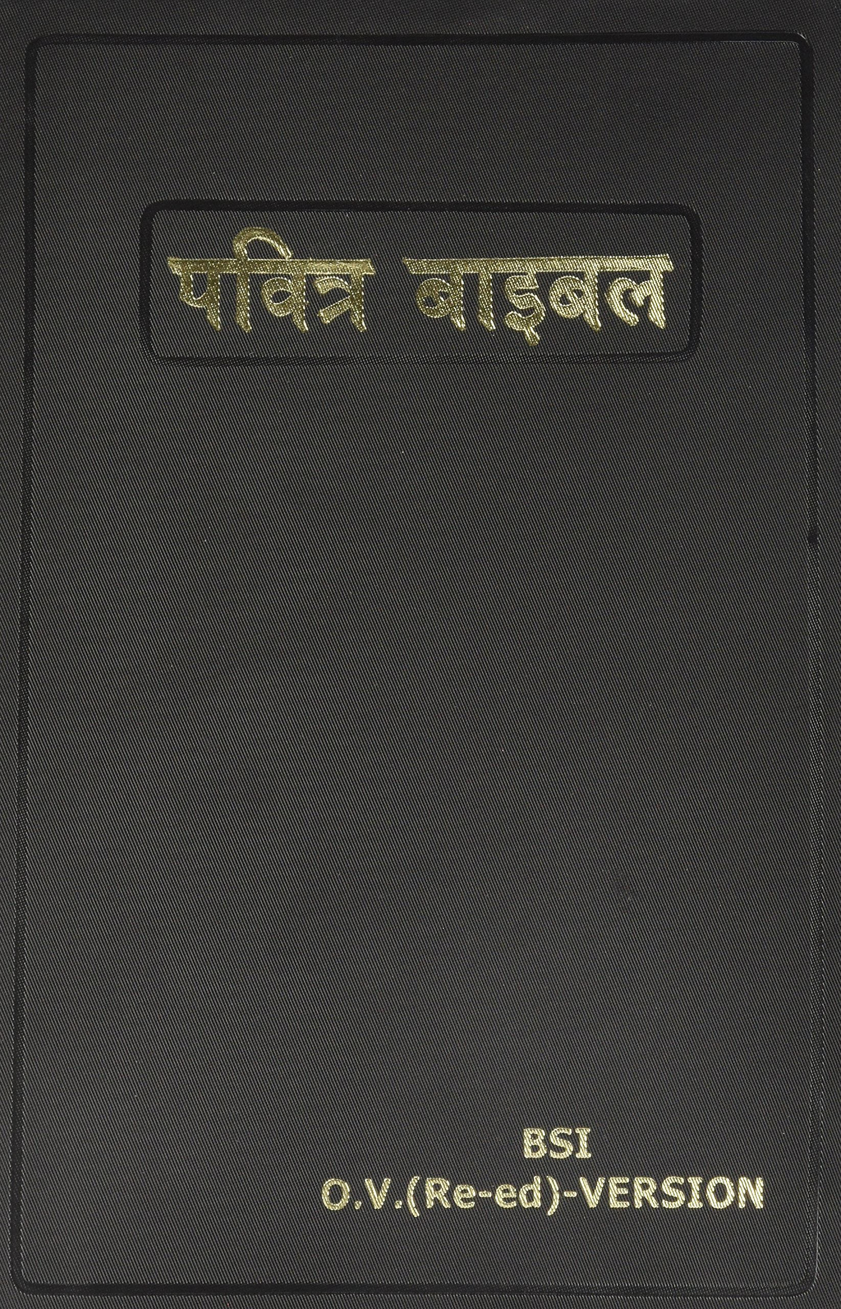 Hindi Bible (Hindi Edition): American Bible Society: 9788122121414