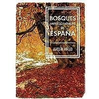 Bosques imprescindibles de España (Nómadas)