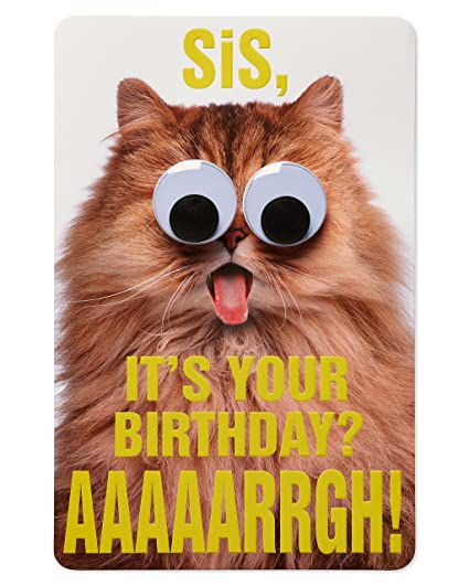 Amazon American Greetings Funny Cat Birthday Card For Sister