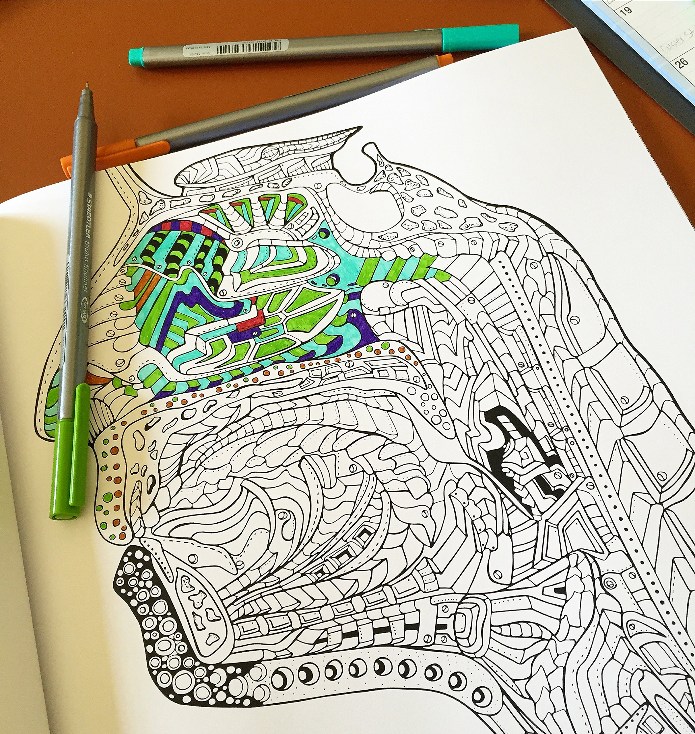 show me your guts an artistic and anatomical coloring book for