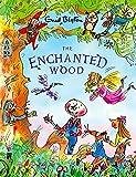 The Enchanted Wood (Magic Faraway Tree)