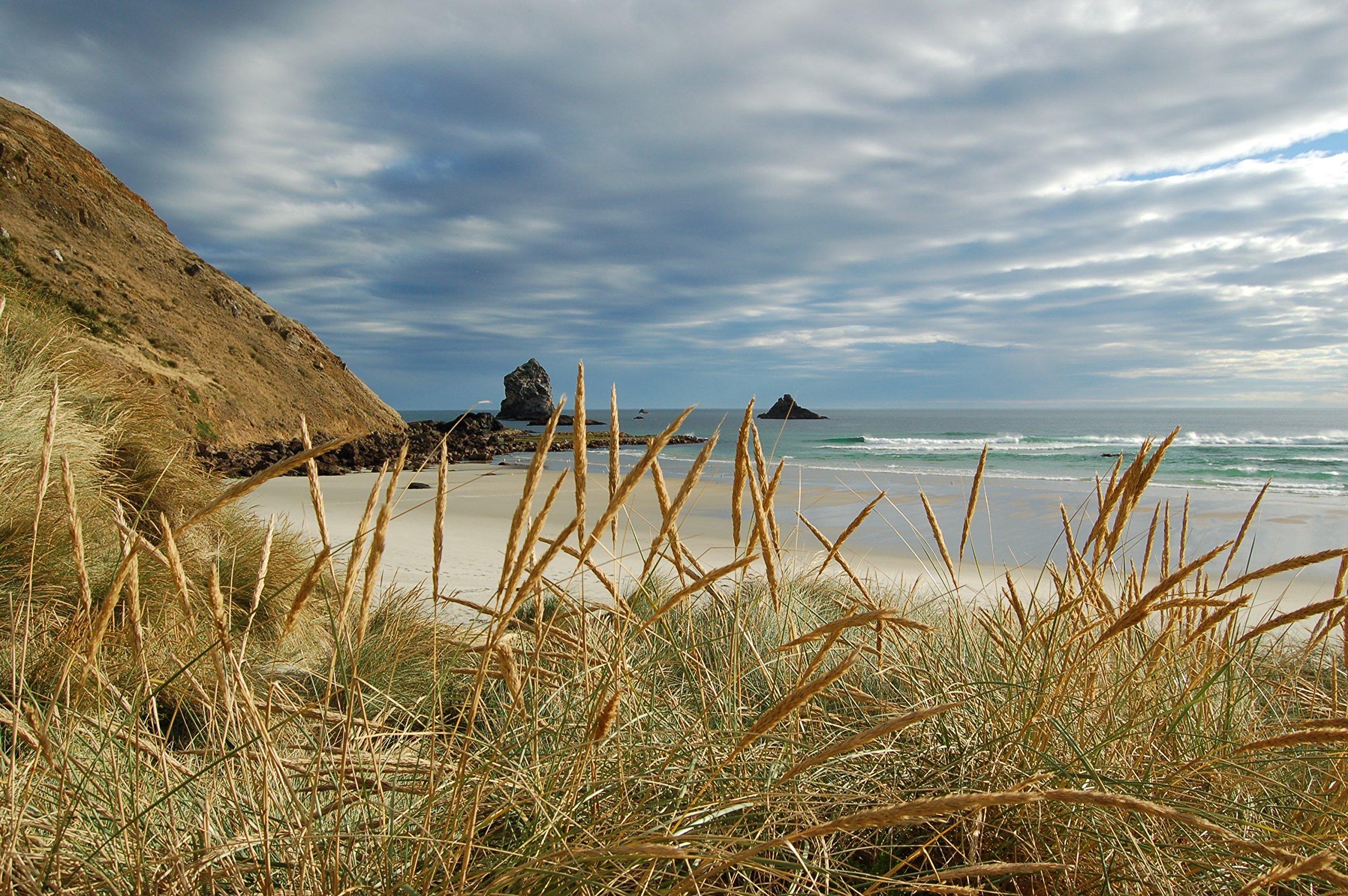 Coastal Beach Scene