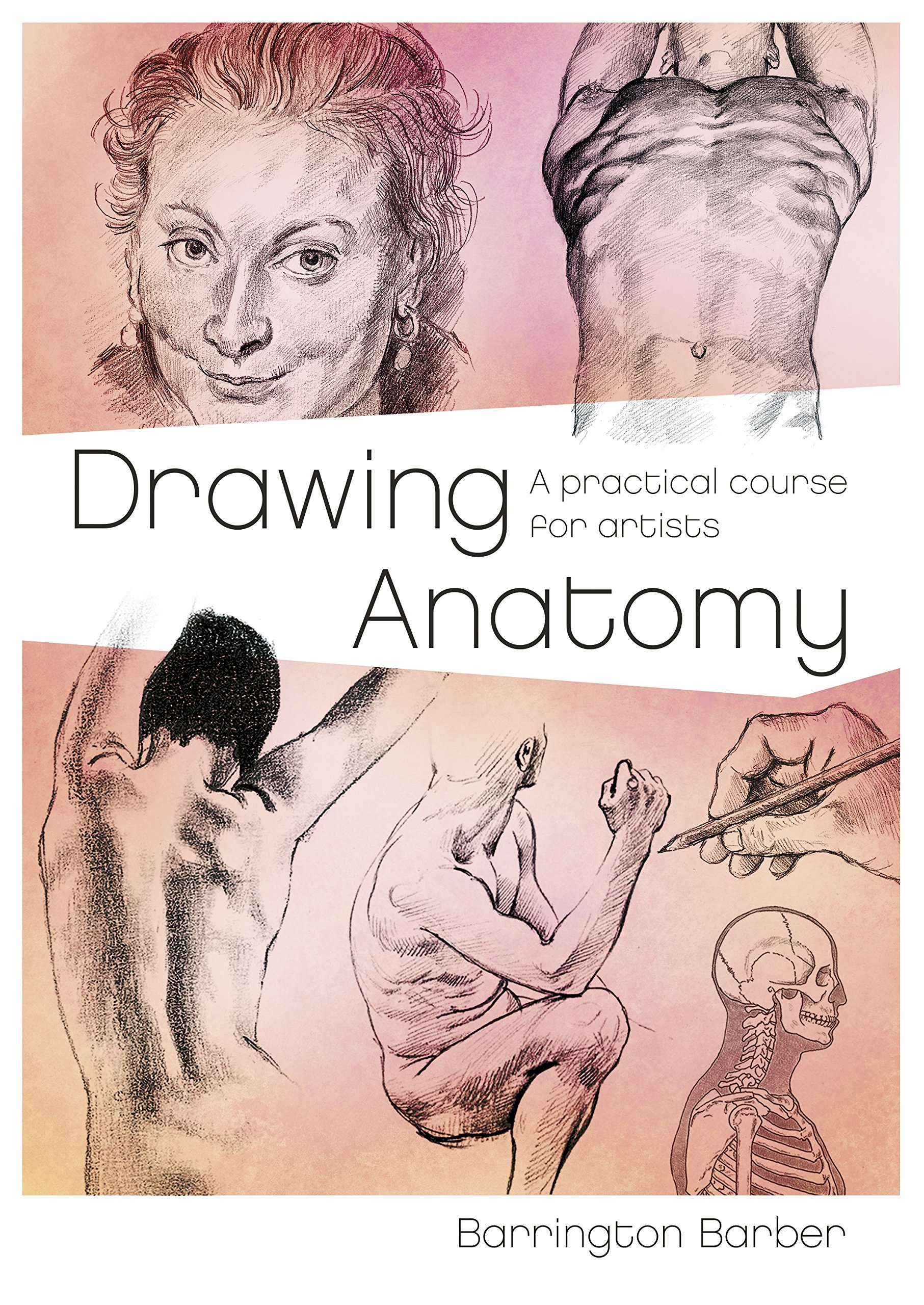 Drawing Anatomy A Practical Course For Artists The Barrington