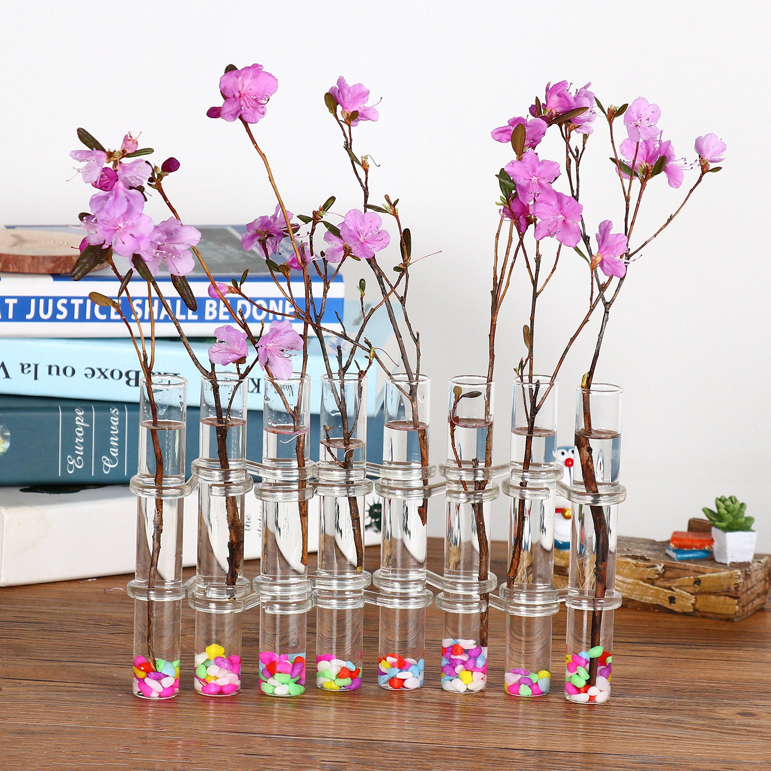 Ivolador 8 Crystal Glass Test Tube Vase Flower Pots for Hydroponic Plants Home Garden Decoration