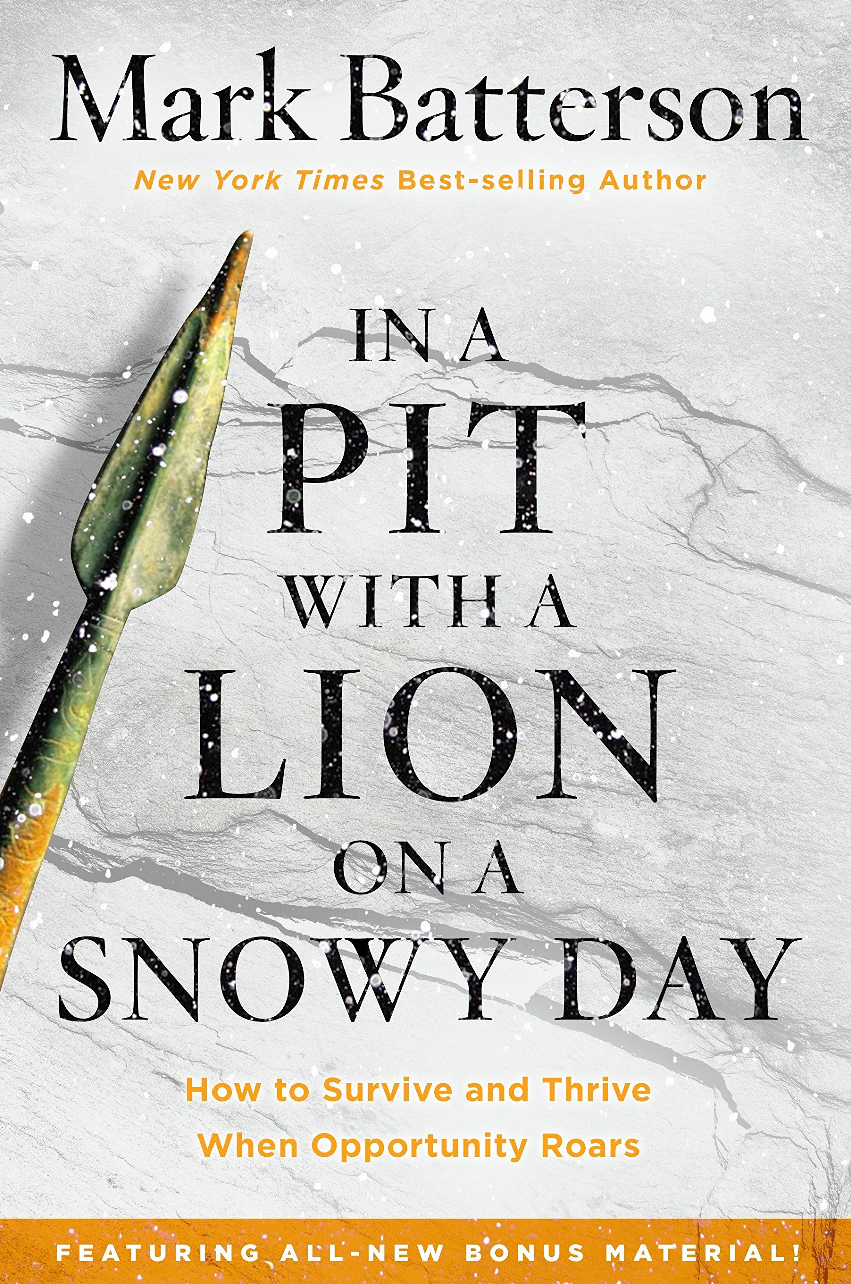 Read Online In a Pit with a Lion on a Snowy Day: How to Survive and Thrive When Opportunity Roars ebook