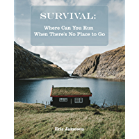 Survival Guide: Where Can You Run When There's No Place to Go (English Edition)