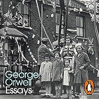 Essays: Penguin Modern Classics