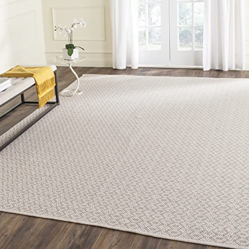 Safavieh Montauk Collection MTK716G Handmade Flatweave Ivory and Beige Cotton Area Rug 8' x 10'