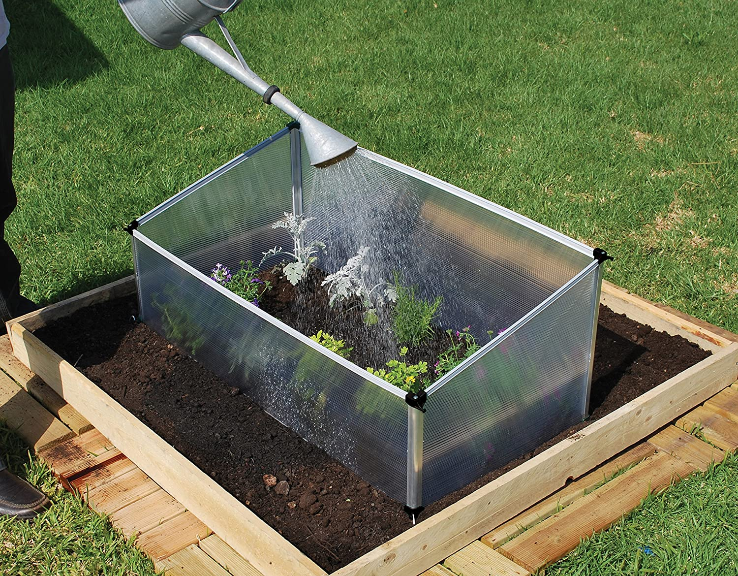 Botanico Let\'s Grow Cold Frame- Single: Amazon.co.uk: Garden & Outdoors