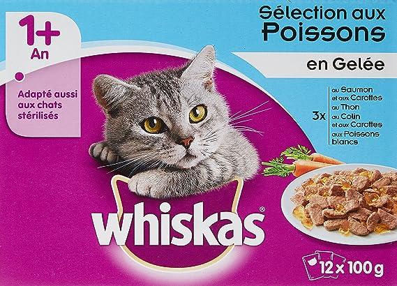 whiskas - Alimento húmedo para Gatos, con Carne y Pescado en Salsa, envasado en bolsitas Que lo Mantienen Fresco: Amazon.es: Productos para mascotas