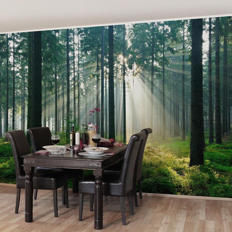 Apalis Vliestapete Enlightened Forest Fototapete Breit | Vlies Tapete Wandtapete Wandbild Foto 3D Fototapete für Schlafzimmer Wohnzimmer Küche | mehrfarbig, 98574