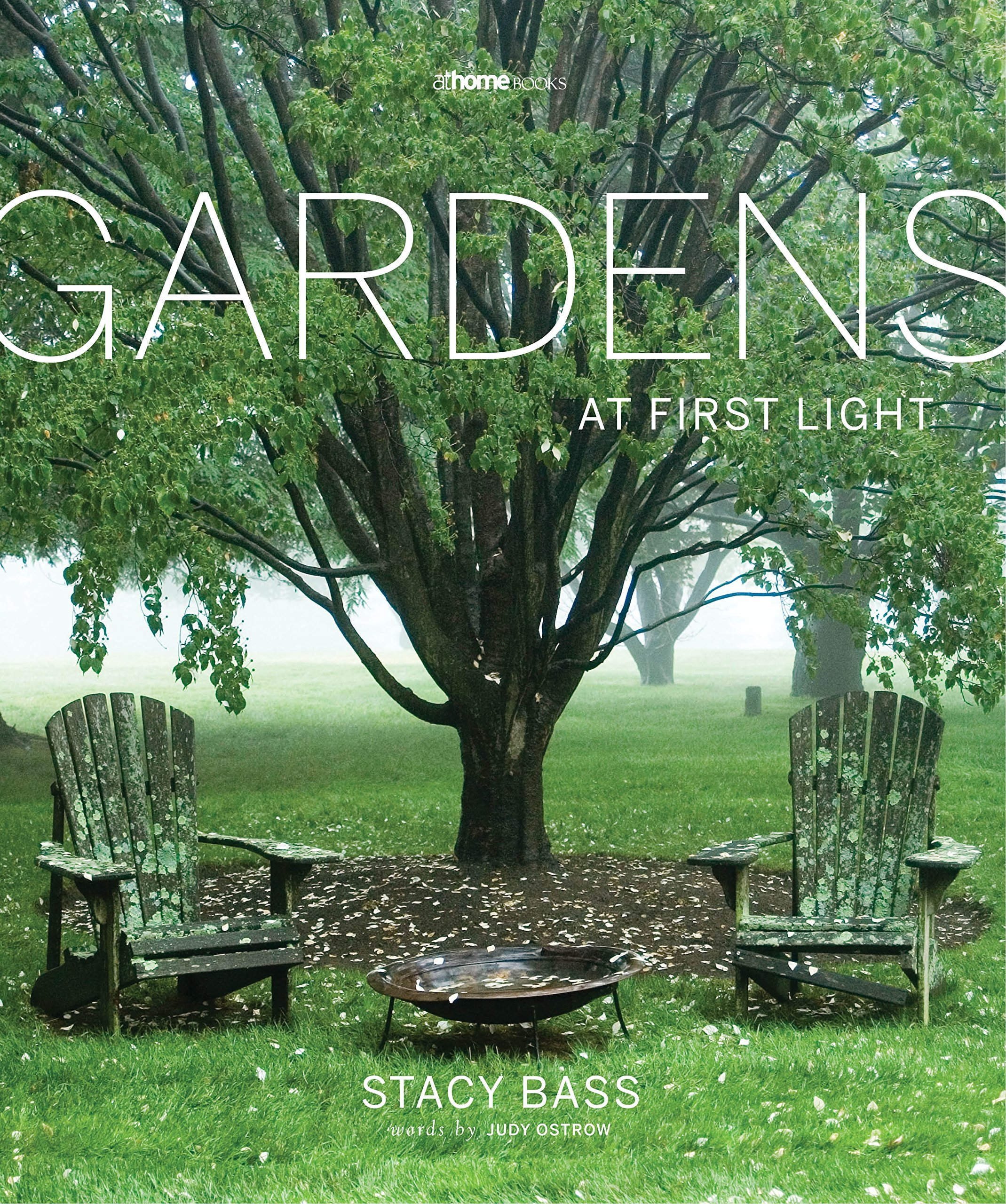 Gardens at First Light Amazoncouk Stacy Bass 9780986268908 Books