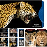 [12 Pack] RFID Blocking Sleeves - Contactless card protection. Stunning Designer Set Credit & ID Card Protector Sleeves, Ideal for Wallet / Passport Protectors - Full Protection by Shielding Contactless RFID & NFC Radio Chips – 'Cats of the World' Series