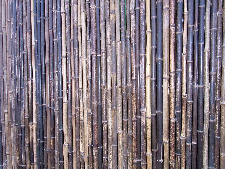 Bambusmatte Sichtschutz Bambus Gartenzaun Windschutz Sichtschutzmatte 200 x 200 black
