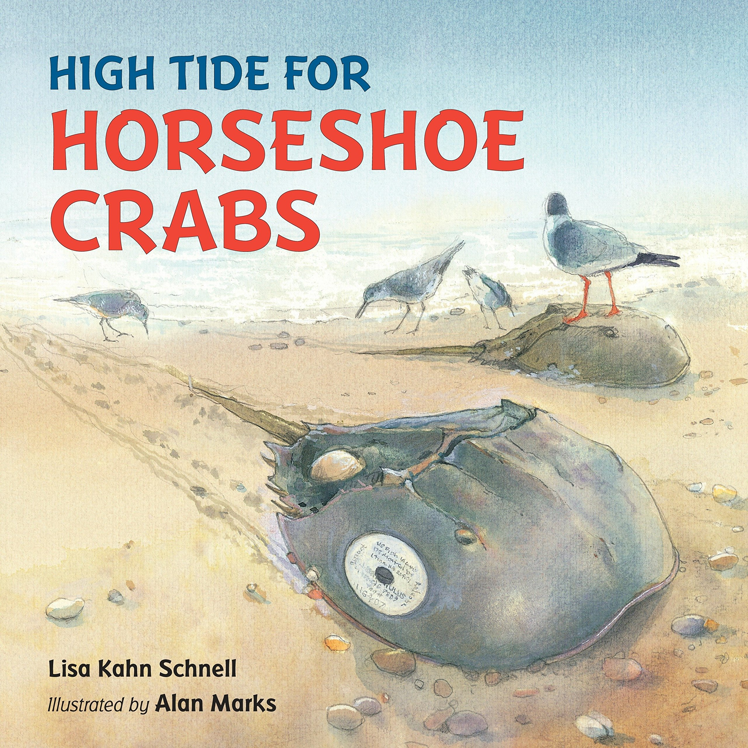 High Tide For Horseshoe Crabs Lisa Kahn Schnell Alan Marks