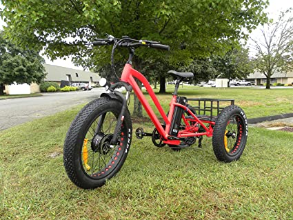 3da4838d3da Image Unavailable. Image not available for. Color: FT-1900 Fat tire  Electric Tricycle