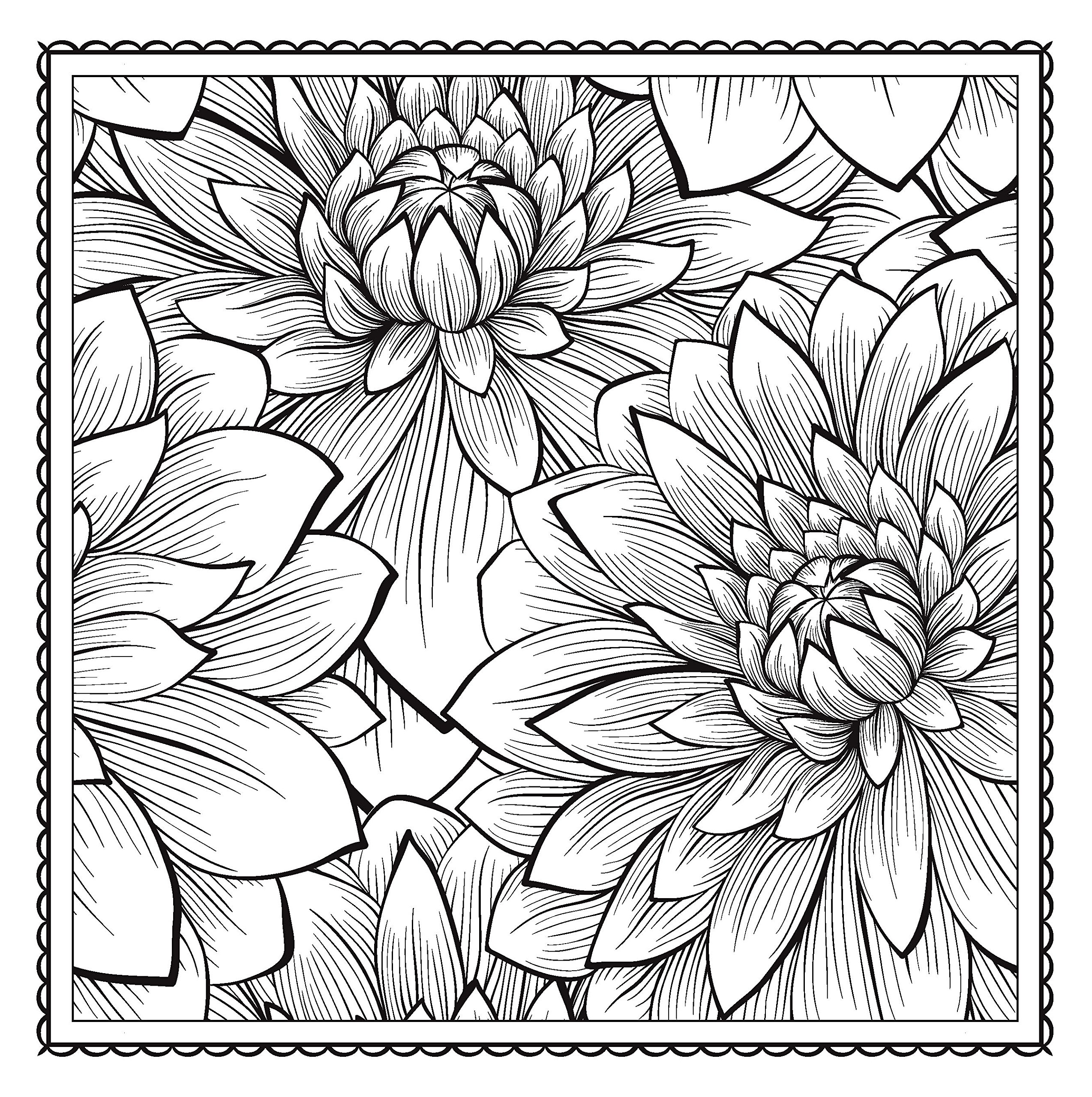 Amazoncom Blossom Magic Beautiful Floral Patterns Coloring Book