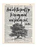 Amazon Price History for:Into the Forest, John Muir Nature Quote, Dictionary Page Art Print, 8x11 UNFRAMED