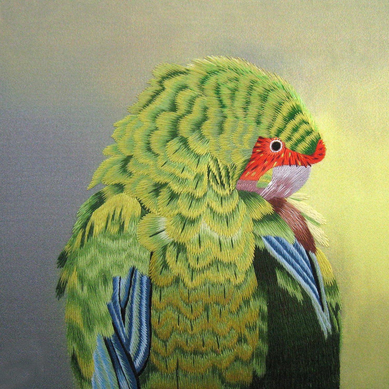 Amazon Com King Silk Art 100 Handmade Embroidery Green Parrot