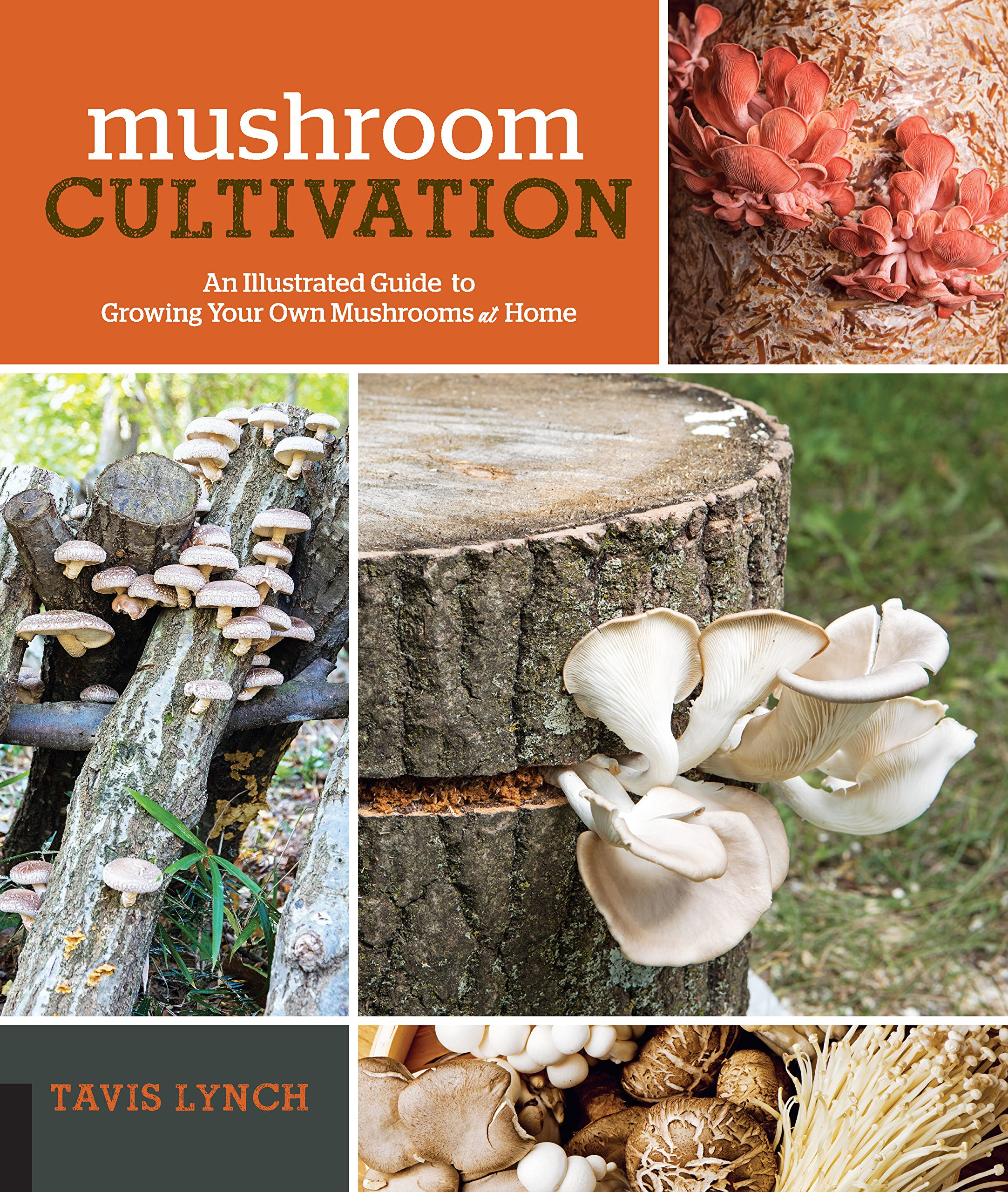 Mushroom Cultivation: An Illustrated Guide to Growing Your Own