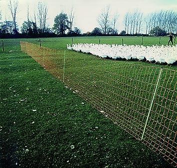 ARNDT Clôture de jardin/filet à volaille Pour enclos à chiens, chats ...
